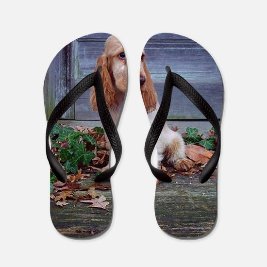 English Cocker Spaniel Flip Flops