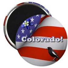 Colorado with American Flag Magnet