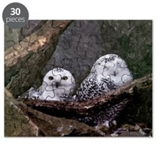 Two Owls Puzzle