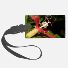 Clay's Hibiscus (Hibiscus clayi) Luggage Tag