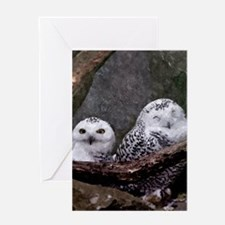 Two Owls Greeting Cards