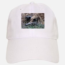 Reach out and touch someone! Baseball Baseball Cap