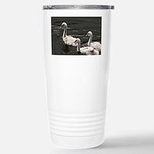 Trumpeter Swan (Cygnus  Stainless Steel Travel Mug