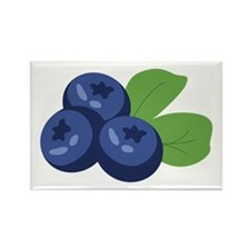 Blueberry Magnets