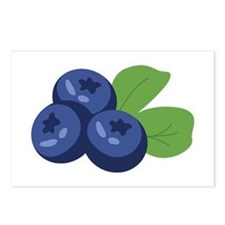 Blueberry Postcards (Package of 8)