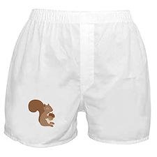 Squirrels Acorn Boxer Shorts