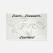 Z Z Zoomies Rectangle Magnet