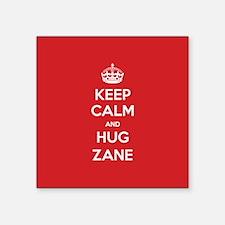 Hug Zane Sticker
