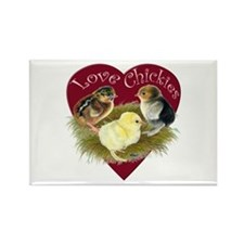 Love Chickies Magnets
