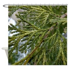 Juniper Shower Curtain