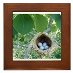 Bird's Nest Framed Tile