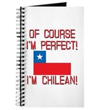 Of Course Im Perfect Im Chilean Journal