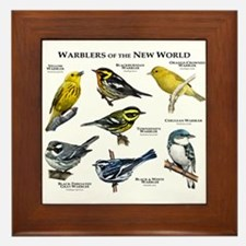 Warblers of the New World Framed Tile