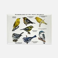 Warblers of the New World Rectangle Magnet