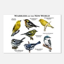 Warblers of the New World Postcards (Package of 8)
