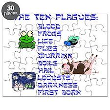 The Ten Plagues Puzzle