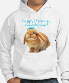 happy-Passover.png Hoodie