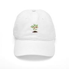 Tomato Plant Baseball Baseball Cap