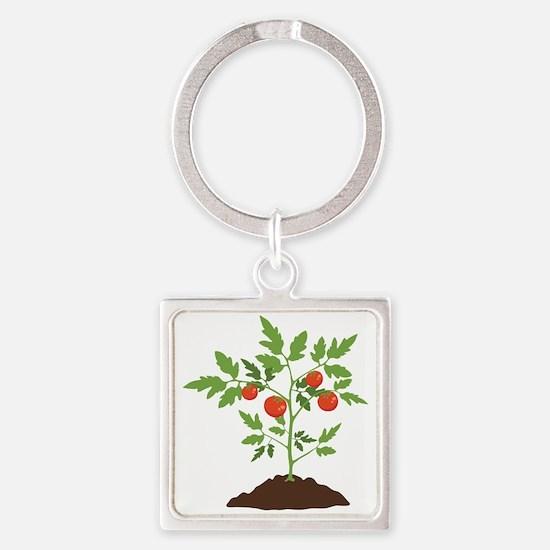 Tomato Plant Keychains