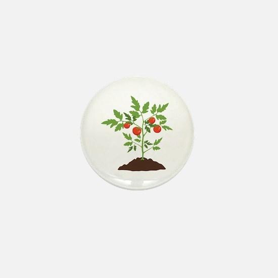 Tomato Plant Mini Button