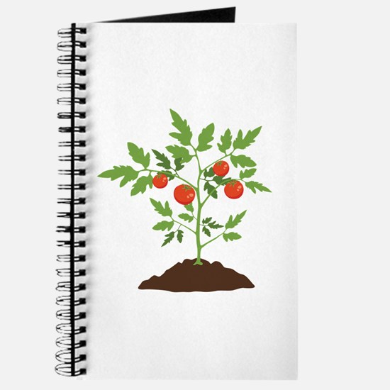 Tomato Plant Journal