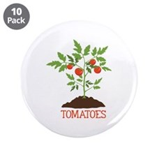 "TOMATOES 3.5"" Button (10 pack)"