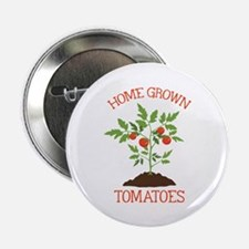 """HOME GROWN TOMATOES 2.25"""" Button (10 pack)"""