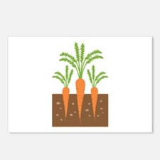Carrot Plants Postcards (Package of 8)