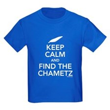 Keep Calm and Find the Chametz T