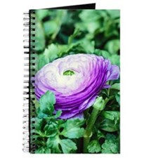 Purple Persian Buttercup Journal