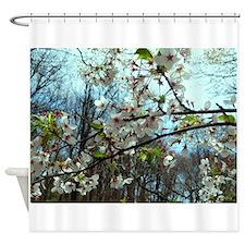 DSC02649 Shower Curtain