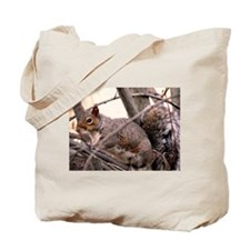Fluffy Squirrel Tote Bag