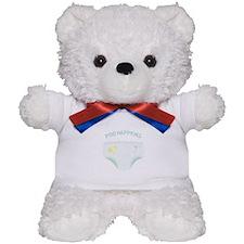 POO HAPPENS Teddy Bear