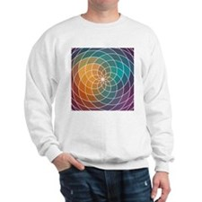 Geometric Multi Color Patterned Design Sweatshirt