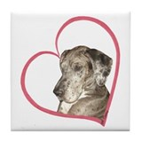 Merle great dane Drink Coasters
