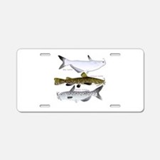 Three North American Catfish Aluminum License Plat