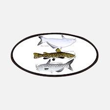 Three North American Catfish Patches