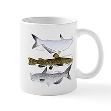 Three North American Catfish c Mugs