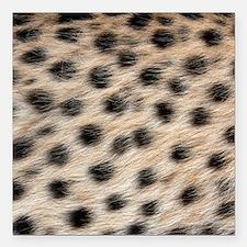 """Wild Animal Pattern Square Car Magnet 3"""" x 3"""""""