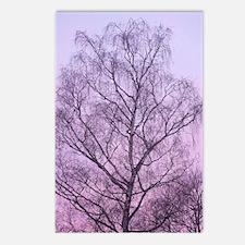 Art of Tree Postcards (Package of 8)