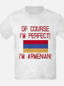Perfect Armenian T-Shirt