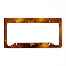 Golden Art License Plate Holder