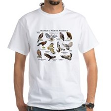Hawks of North America Shirt