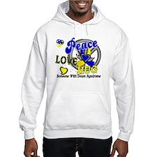 DS Peace Love Hug 2 Hoodie