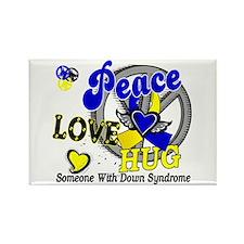 DS Peace Love Hug 2 Rectangle Magnet