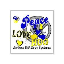 "DS Peace Love Hug 2 Square Sticker 3"" x 3"""