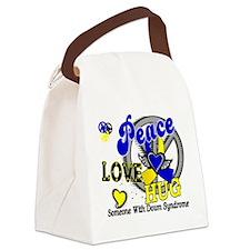 DS Peace Love Hug 2 Canvas Lunch Bag
