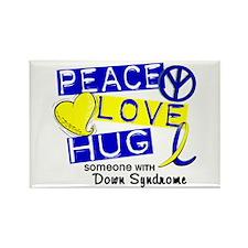 DS Peace Love Hug 1 Rectangle Magnet