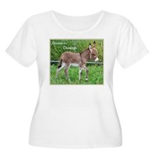 Devoted to Donkeys Plus Size T-Shirt