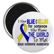 "DS Means World to Me 2 2.25"" Magnet (100 pack)"